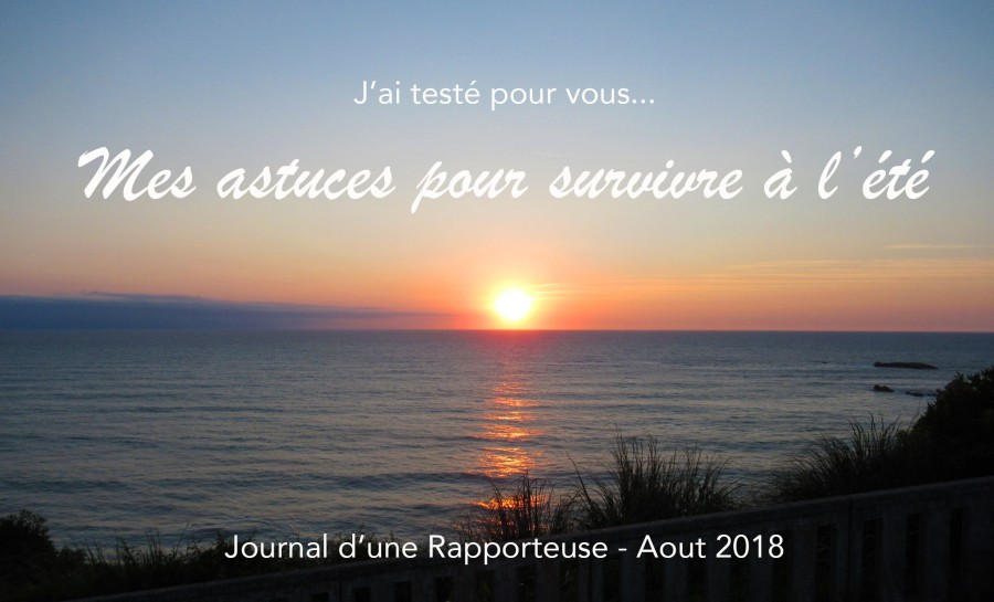 Journal d'une Rapporteuse - Survivre à la Canicule